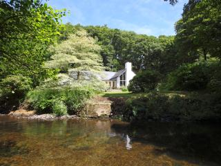 Dyffryn Tawel, Newport 5* Visit Wales grading - Newport vacation rentals