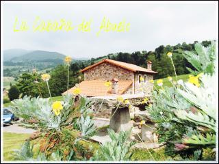 LA CABAÑA DEL ABUELO DE SELAYA - Cantabria vacation rentals