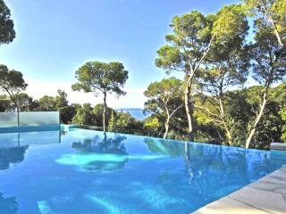 Villa Il Castelletto *SPECIAL SUMMER OFFER!* - Cinquale vacation rentals