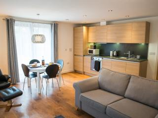 Norwich City Apartments Maidstone Road. - Norwich vacation rentals