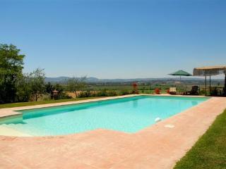 La Chianina - Cortona vacation rentals