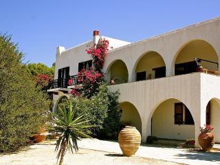 Elena's Villa, Panoramic view at sea and mountain - Aegina vacation rentals