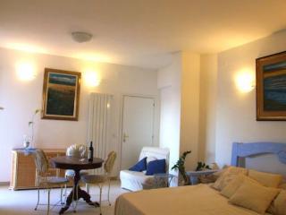 Castagneto M - Castagneto Carducci vacation rentals