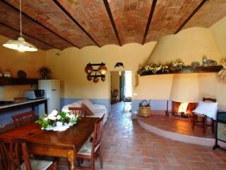 Villa Albert - Castiglione D'Orcia vacation rentals