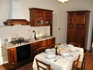 Villa La Collina - San Casciano dei Bagni vacation rentals
