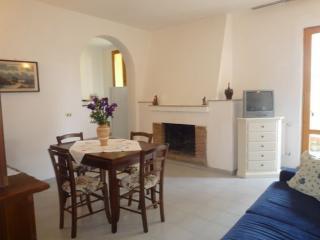 Castellina - Castellina In Chianti vacation rentals
