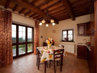 Colli RM - Rosignano Solvay vacation rentals