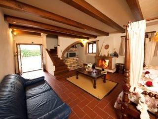 Villa Fabian - Monte San Savino vacation rentals