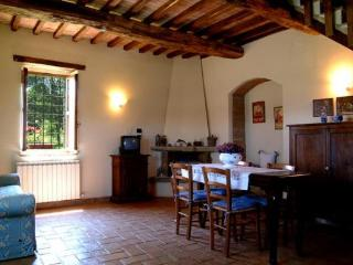 Corbezzolo VI - Civitella del Lago vacation rentals