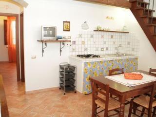 Cipresseto 8 - Castagneto Carducci vacation rentals