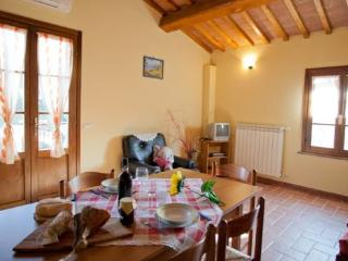 Podere Tosco G - Pieve di Santa Luce vacation rentals