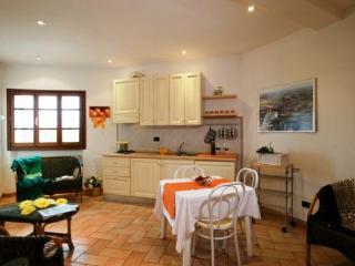 Il Nibbio - San Gimignano vacation rentals