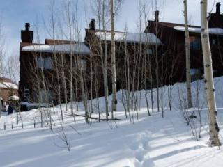NEW LISTING!  5 World Class Ski Areas, Great View and Back Country Out the Back Door! - Silverthorne vacation rentals