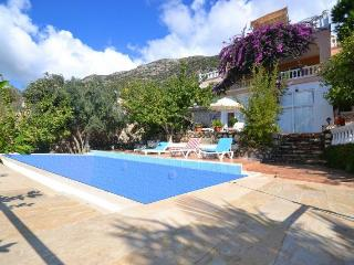 Villa Green House (Kordere - Kalkan) - Unye vacation rentals