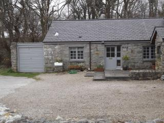 Barn Conversion close to the sea, mountains and wo - Trefor vacation rentals