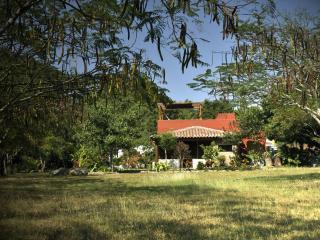 TURISMO RURAL AND B & B   COMALA,  COLIMA,  MEXICO - Colima vacation rentals