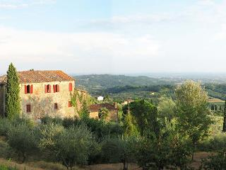 Property among olive groves and vineyards on the hills east of Lucca. Composted of an old stone- built house and guesthouse. SAL - Lappato vacation rentals