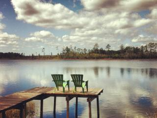 Grasshopper Lodge Rustic HandCrafted Cabin Florida - Georgetown vacation rentals