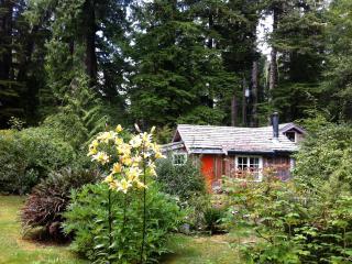 RED CROW GARDEN COTTAGE - Tofino vacation rentals