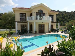 Villa Ria, Dalyan - Aegean Region vacation rentals