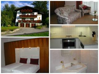 Haus Strutzenberger 1 - Bad Ischl vacation rentals