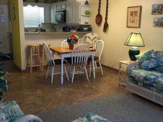 South Padre Island  condo 1/2 block from the beach - South Padre Island vacation rentals