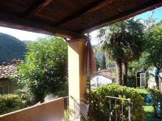 The Palms - Pescaglia vacation rentals