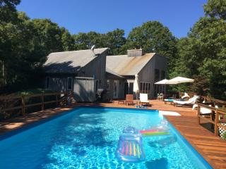 Contemporary East Hampton 3 Bdrm in 4 Acres - Water Mill vacation rentals