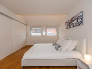 Futuristic 2BDR Designer Loft - Prague vacation rentals