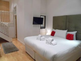 Albert Bridge Apartments - Studio - Zone 2 - London vacation rentals