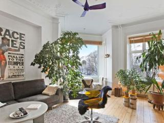 Exceptionally well located 2-4 persons apartment - Copenhagen vacation rentals