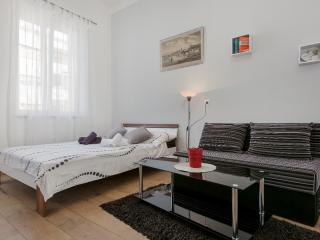 Comfortable studio with A/C and WI-FI near centre - Slatine vacation rentals