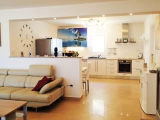 Exclusive apartment on Vir Island 100m from beach - Vir vacation rentals