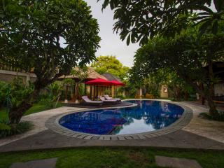 Luxurious 5BR/7bed CNTRL seminyak - Sanur vacation rentals