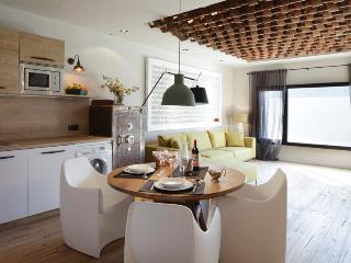 Beautiful loft over the sea- capacity 4 persons - Begur vacation rentals