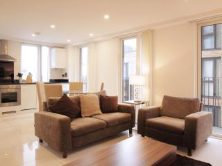 Modern Euston/Kings Cross 2 bed 2 bath - Disley vacation rentals