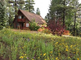 Blue Jay Vista Mountain Chalet - Pure Summer Bliss - Flagstaff vacation rentals