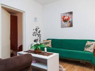 near by center apartment - Serbia vacation rentals