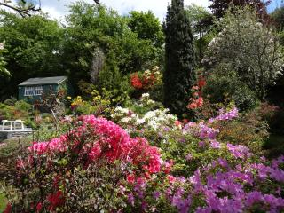 Winterfell Cottage Bowness Beautiful Garden/Prking - Bowness-on-Windermere vacation rentals
