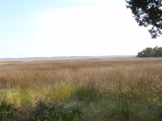 The Marsh House - Crescent vacation rentals