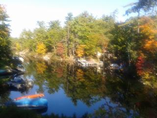 Moonrakers on Beautiful Stoney Lake, Kawarthas - Kawartha Lakes vacation rentals