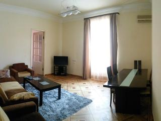 Awesome apartment on Sakharov Square - Yerevan vacation rentals