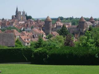 Charming house in amazing medieval Burgundy city - Burgundy vacation rentals