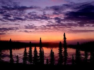 The Retreat in the Woods 150 feet from lake - Soldotna vacation rentals