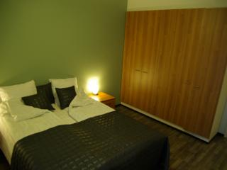 Repotie Apartment - Lappeenranta vacation rentals