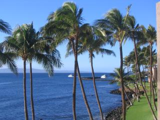 3 Bedroom In Paradise! - Wailuku vacation rentals