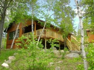 Serenity: Beautiful Island Getaway Cabin on Bear Island Lake - Minnesota vacation rentals