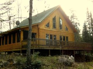 Bear Island Retreat: Great Northwoods Cabin with Modern Conveniences and End of the Road Privacy! - Minnesota vacation rentals
