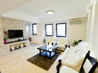 Great apartment in Skopje centar - Skopje vacation rentals