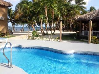 Our beautiful thatched roof 722 sq ft. cabana 13A - San Pedro vacation rentals